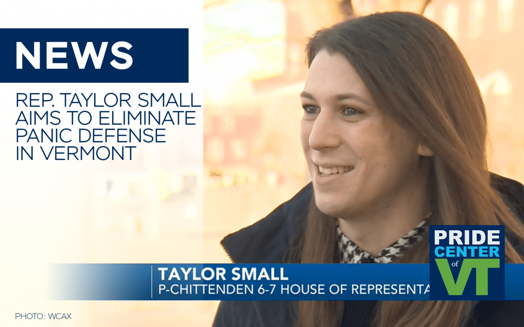 Rep. Taylor Small Aims to Eliminate Panic Defense in Vermont